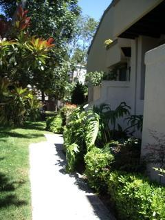 welcome!! - -Close to UCSD/Hospitals/Bases/Beaches/and more - La Jolla - rentals