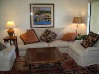 Spring Special-Close to UCSD/Hospitals/Bases - La Jolla vacation rentals