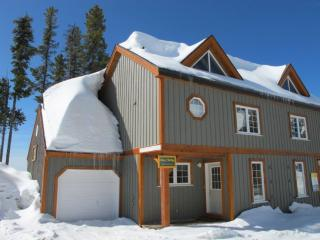 3 bedroom House with Internet Access in Big White - Big White vacation rentals