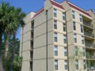 Beautiful 4 story buildings (Elevator service) - NO LONGER RENTING SORRY - Hilton Head - rentals