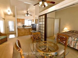 Cozy 1 bedroom Condo in Maalaea - Maalaea vacation rentals