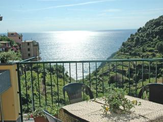 Beautiful Condo with A/C and Balcony - Corniglia vacation rentals