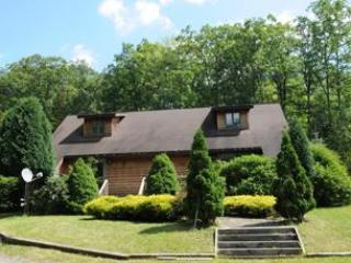 Gravelly Run Lodge - McHenry vacation rentals