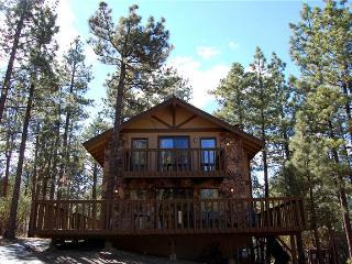 Nestled Within the Trees #1233 ~ RA45966 - Big Bear City vacation rentals