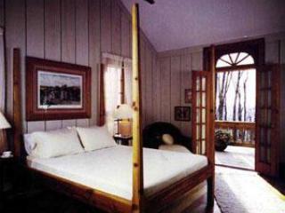 Cabin at Wintergreen - VA Mt. Resort Luxury Rental - Wintergreen vacation rentals