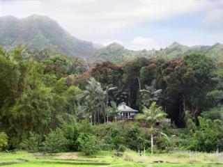 Romantic Cottage Private Acre Paradise Views Pool! - Haena vacation rentals