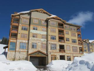 Romantic 1 bedroom Apartment in Big White - Big White vacation rentals