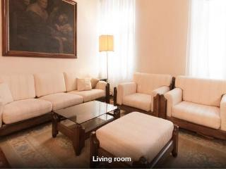 Large & Beautiful Apartment in Old Town Ljubljana - Ljubljana vacation rentals