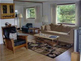 Pacific Terrace T446 - Image 1 - Gearhart - rentals