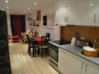Central Lisbon near Castle Saint George - Lisbon vacation rentals