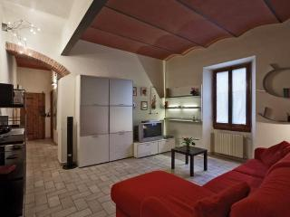 Campuccio Apartment - Oltrarno Area - Florence vacation rentals