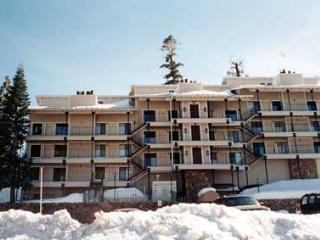 Beautiful House with 2 BR & 1 BA in Lake Tahoe (223a) - Lake Tahoe vacation rentals