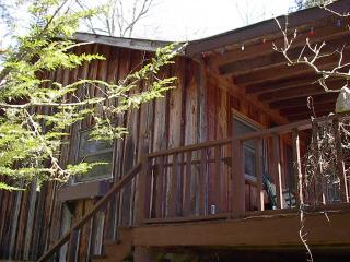 Located in Pisgah National Forest! - Clyde vacation rentals