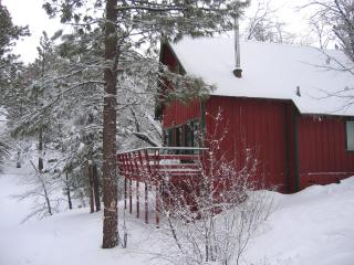 CHARMING CABIN w/ SPA & SLEDDING HILL-Near Slopes - Big Bear Area vacation rentals