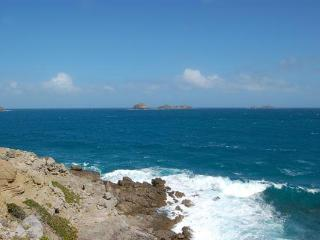 Dramatic ocean views with one of the largest pools on the island WV CBR - Petites Salines vacation rentals