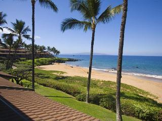 Gorgeous Condo with Internet Access and A/C - Makena vacation rentals