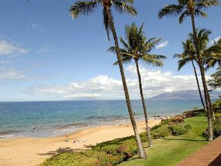 2 bedroom Apartment with Internet Access in Makena - Makena vacation rentals