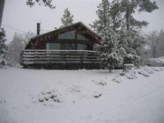 Sunny Cabin---Near Slopes, Lots of snowplay - Big Bear City vacation rentals
