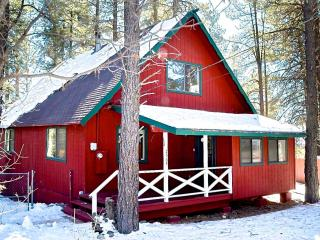 Luxury Cabin/Great Deck in the Pines with Hammocks - Flagstaff vacation rentals