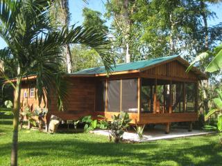 Casitas Calinas - River & Jungle Oasis Casita 2 - San Ignacio vacation rentals