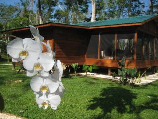Casitas Calinas - River & Jungle Oasis Casita 2 - Belmopan vacation rentals
