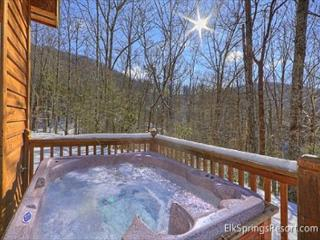Secluded 1 Bedroom Cabin Bordering The Great Smoky Mountain National Park - Gatlinburg vacation rentals