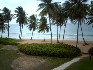 BEACH VILLA 181 - Humacao vacation rentals