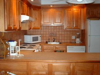 BEACH VILLA 92 - Humacao vacation rentals