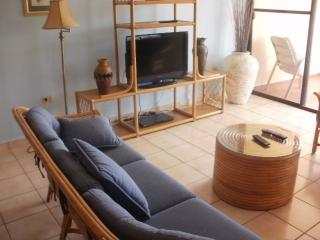 Nice Condo with Internet Access and Dishwasher - Humacao vacation rentals