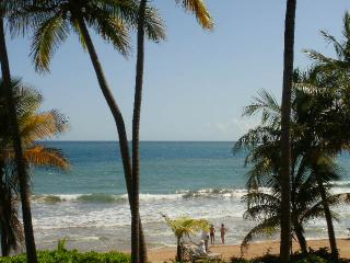 CRESCENT COVE 100 - Humacao vacation rentals