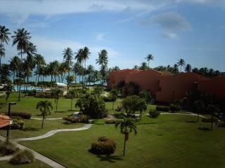 Lovely Condo with A/C and Television - Humacao vacation rentals