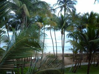 Beautiful 2 bedroom Condo in Humacao - Humacao vacation rentals