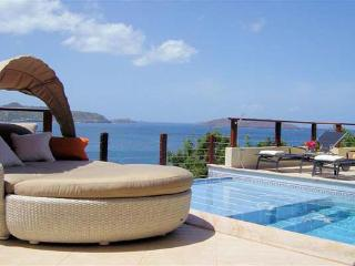A villa with home gym and high end furnishings in St Barts WV CLV - Pointe Milou vacation rentals