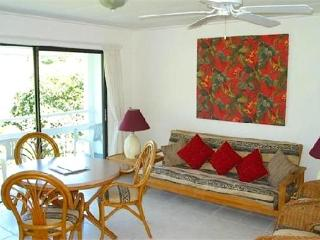 Breezeville Apartments -St.Vincent - Saint Vincent vacation rentals