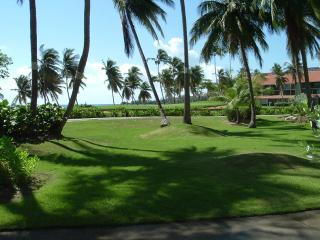Wonderful 2 bedroom Condo in Humacao - Humacao vacation rentals