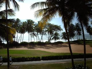 BEACH VILLA 233 - Humacao vacation rentals