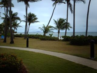Romantic 1 bedroom Humacao Apartment with Internet Access - Humacao vacation rentals