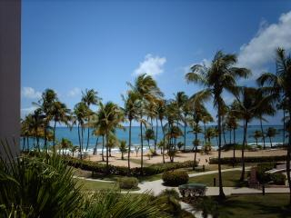 Cozy 2 bedroom Humacao Apartment with Internet Access - Humacao vacation rentals