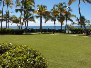 1 bedroom Apartment with Internet Access in Humacao - Humacao vacation rentals