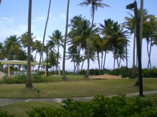 Beautiful 1 bedroom Condo in Humacao with A/C - Humacao vacation rentals