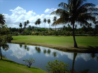 Nice Condo with Internet Access and A/C - Humacao vacation rentals