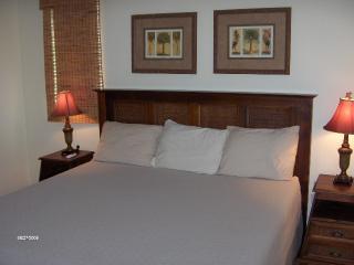 PALMAS DORADAS 516 - Maunabo vacation rentals