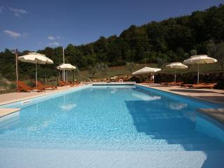 Luxury Villa in Chianti Pisano area, Pool, A/C - Casciana Terme vacation rentals