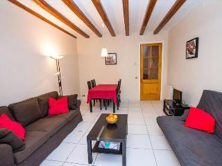 Modern Apartment in Barcelona Historic City Centre - Barcelona vacation rentals