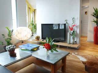 Ideal Group of Family Vacation Rental in Paris - Paris vacation rentals