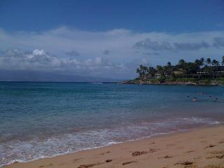 2 Bed. Private Unit just up the street from Beach! - Lahaina vacation rentals