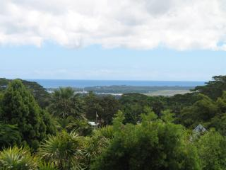 Lovely 1 bedroom House in Hilo - Hilo vacation rentals