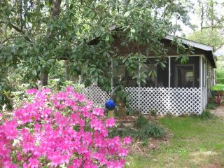 1 bedroom Cottage with Internet Access in Conroe - Conroe vacation rentals
