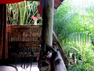 Indigo Tree Cottage, a slice of paradise in Zion. - Portsmouth vacation rentals