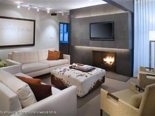 Wonderful Condo with Internet Access and Hot Tub - Aspen vacation rentals